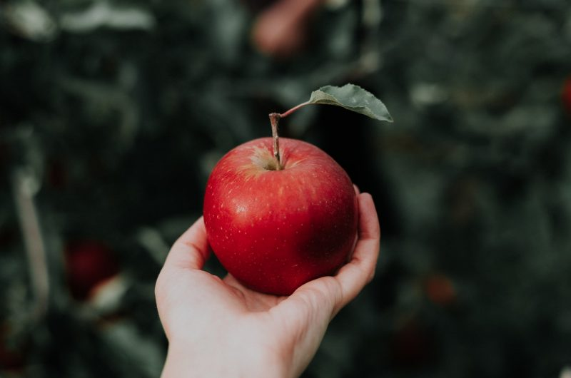 Croustade aux pommes dans une tasse